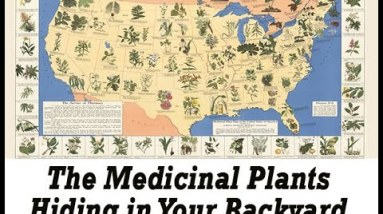 the lost book of remedies review - the best Natural home remedies - survival book