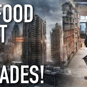 30 Survival Food That Will Last For Decades In The Post-Apocalyptic World