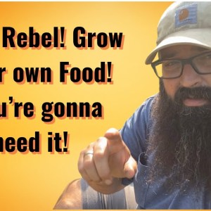 Be a Rebel! Grow your own Food!! You're gonna need it!