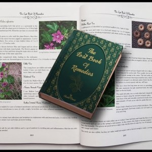 🌿 The Lost Book of Herbal Remedies 🍀 The Healing Power of Plant Medicine Book Buy !! [ REVIEW ]
