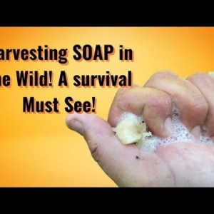 Harvesting Soap in the Wild!! A survival MUST see.
