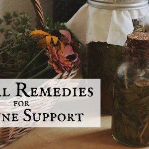Herbal Remedies for Immune Support