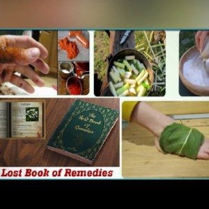 The Lost Book Of Remedies PDF Download Claude Davis