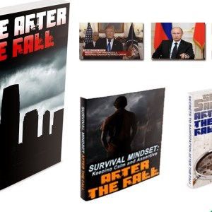 Alive After The Fall 3 - PDF, Review & Book Download [EMP, 2021]