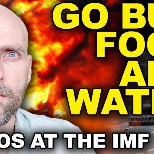 GO BUY FOOD AND WATER! PANIC AND CHAOS AT THE IMF - THE ENTIRE WORLD ECONOMY IS FAILING