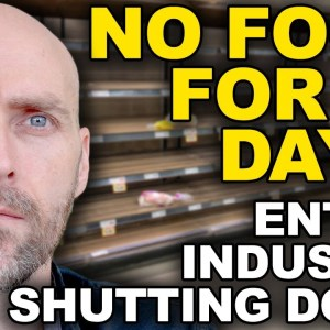 NO FOOD DELIVERY FOR 90 DAYS - INDUSTRY SHUTDOWN - NUCLEAR ACCDIENT NEAR CHINA