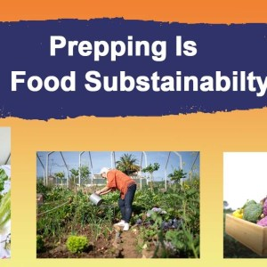 Prepping Is Food Sustainability - Grow a Survival Garden