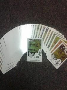 Wild Cards Deck