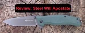 Steel Will Apostate review