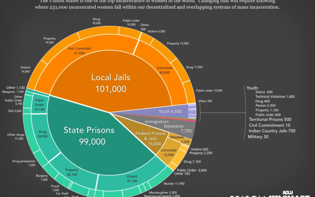 Women's Mass Incarceration: The Whole Pie 2019