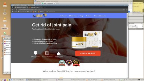 beezmax review  is it scam or really work