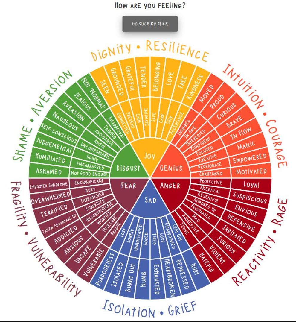 Apply the Emotion Wheel to Yourself