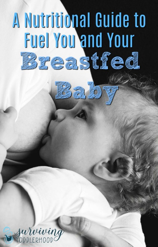 Wondering how to eat when you are breastfeeding? Check out this short nutritional guide for breastfeeding moms that was written by a registered dietician, and learn how you can use food to fuel you and your baby. Motherhood   Breastfeeding   Mothering   Natural Remedies   #breastfeeding #pregnancy #postpartumcare #takebackpostpartum #postpartum #nursing #momhacks #momlife #crunchymom