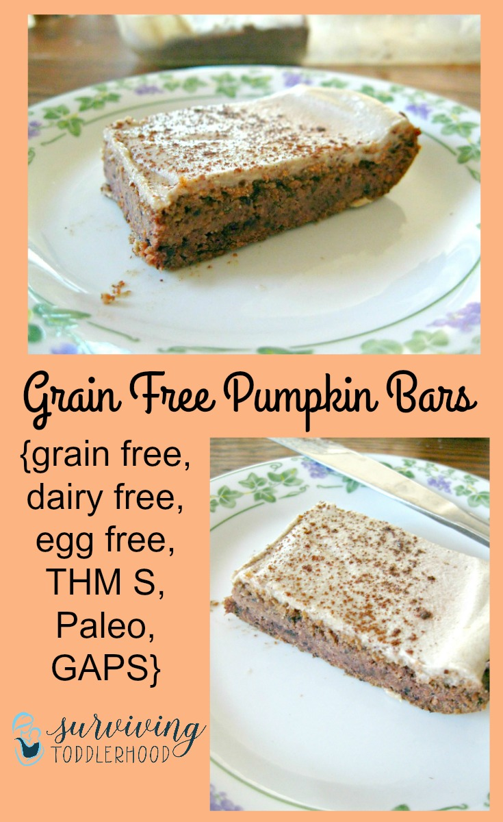 Low Carb Pumpkin Bars {grain free, egg free, low sugar, THM, Paleo, and GAPS legal
