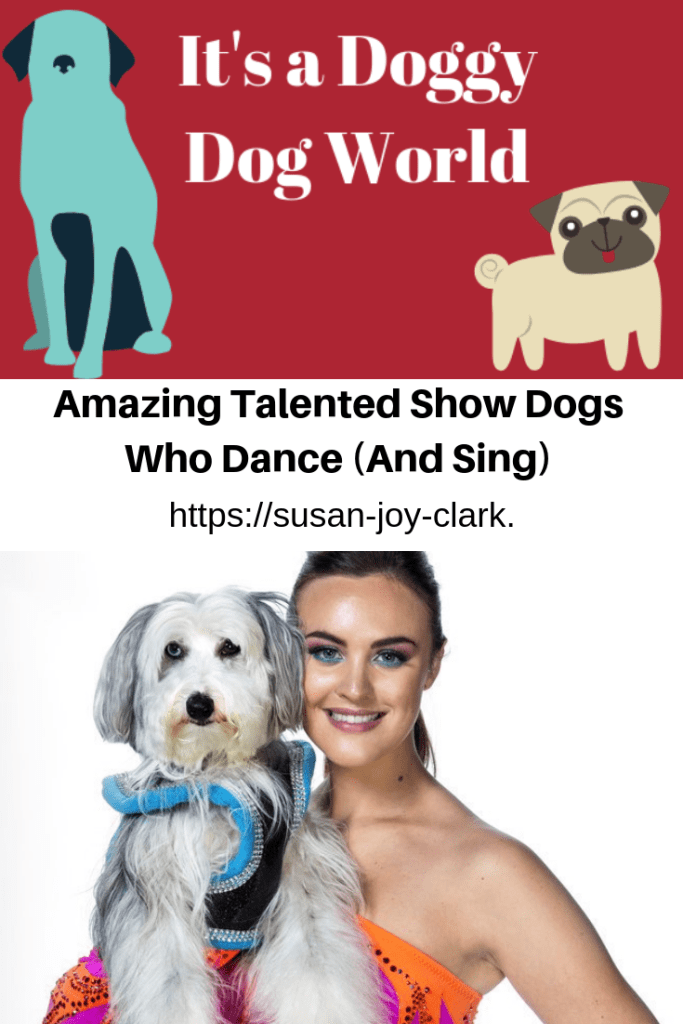 Pinterest graphic showing Ashleigh and her dancing dog, Sully