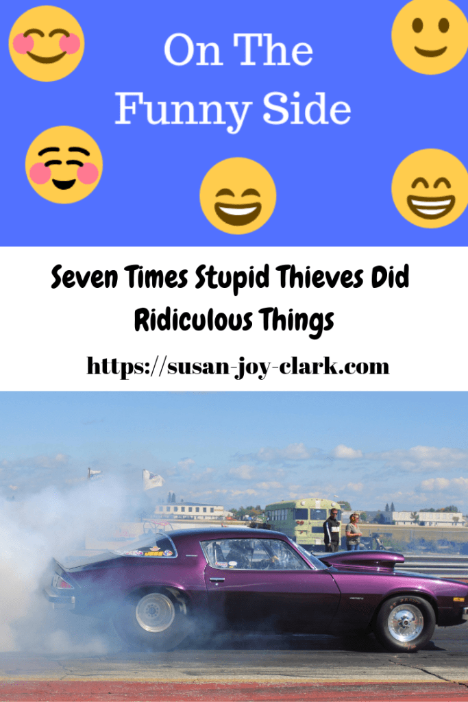 "Pinterest graphic for ""Seven Times Stupid Thieves Did Ridiculous Things,"" showing a purple couple taking off in a cloud of smoke."