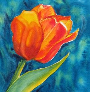Orange Tulip – Image © Susan Bartel. All Rights Reserved.