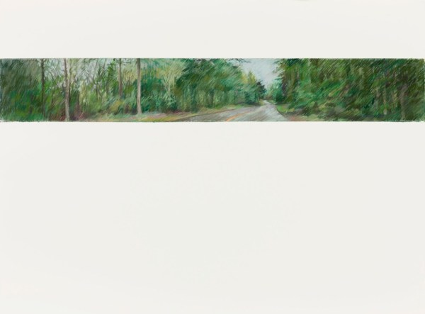 Salt Spring Island Road 1, 22.5x30 pastels on Arches Paper