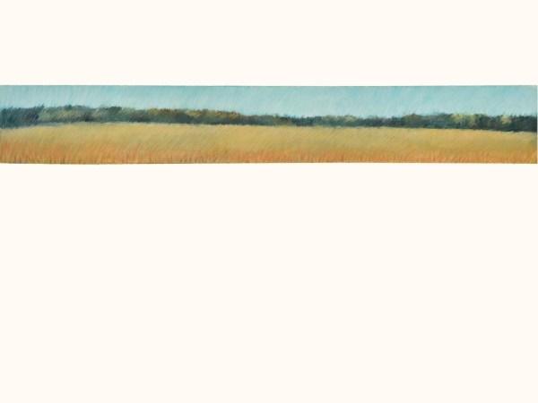 Wheat Field 2016 5x30