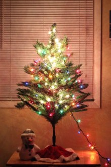 Christmas Preparations 6