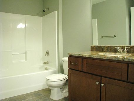 Lower level full bath with one piece tub/shower combination