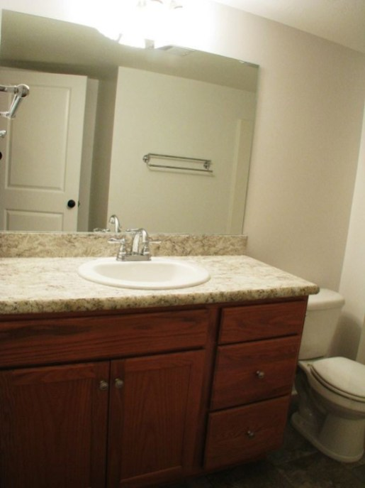 2444 lower level full bath cabinet
