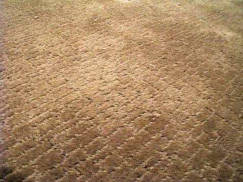 2506 Living room carpet