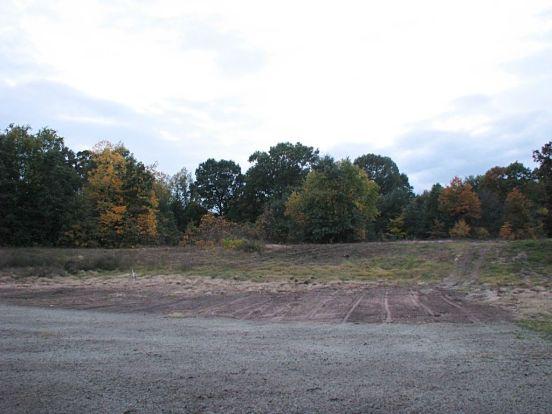 2437 Backyard view