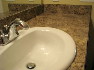 2419 Sink and faucet in master bath vanity
