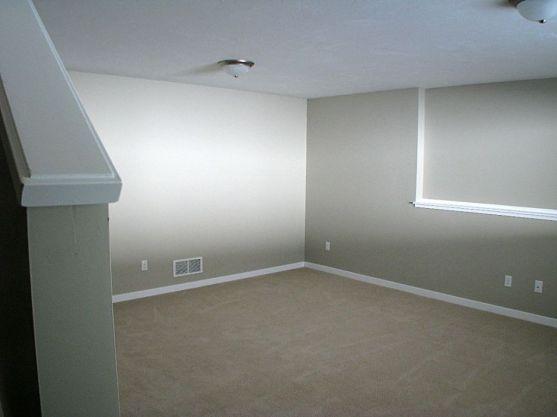 Carpeted lLower level family room