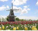 Windmill - postcard cover
