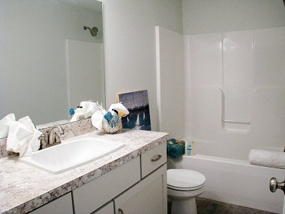 Full bath-Lower Level- one peice tub shower combo.