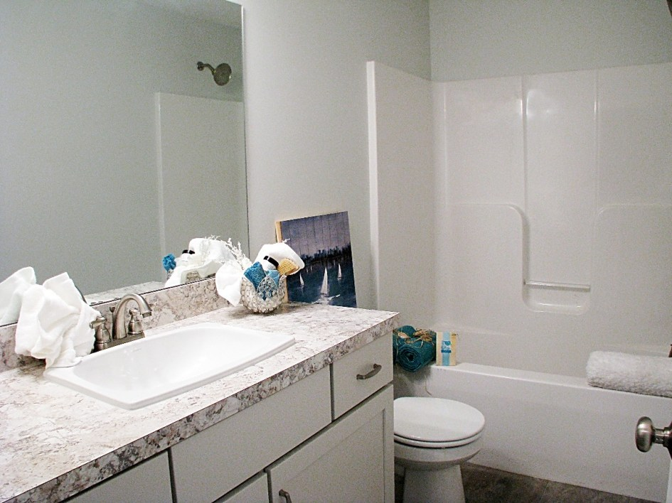 Full bath-Lower level-one peice tub shower combo.