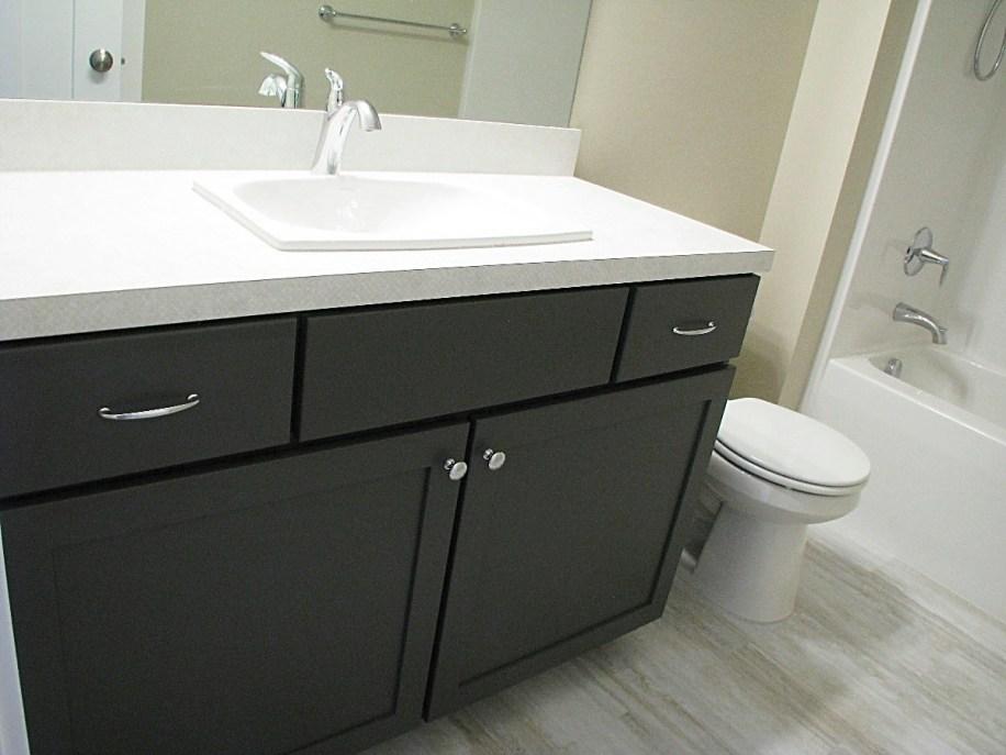 LL-BA-Full-cabinet-jpg