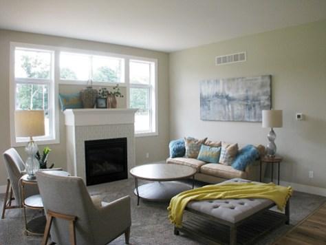 Living Room-fireplace-02