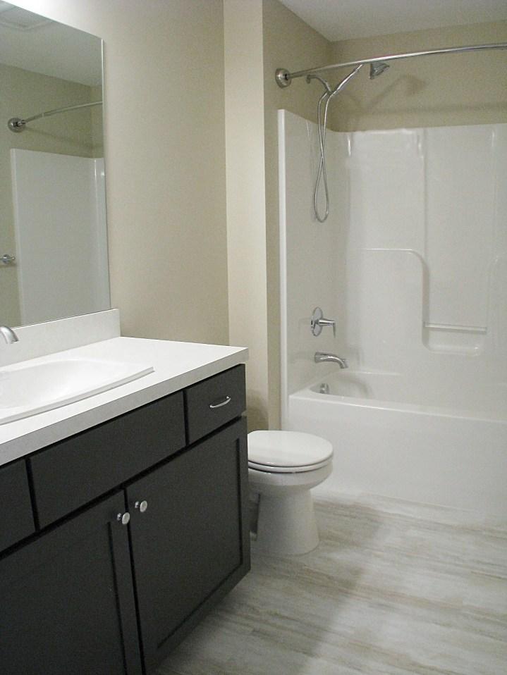 Lower lever Full Bath
