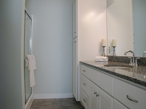cabinets white, walk in shower with glass door