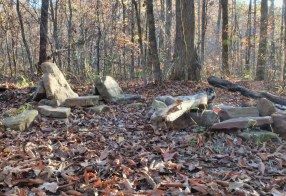 Flintstones-like recliners around the fire ring at our Lewis Prong Creek 2 camp site