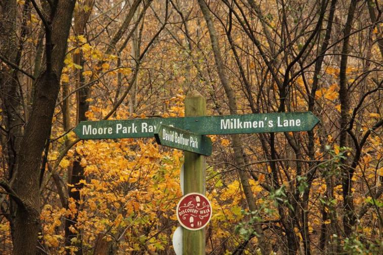 LTR-Park-Drive-Reservation-Trail-Fork