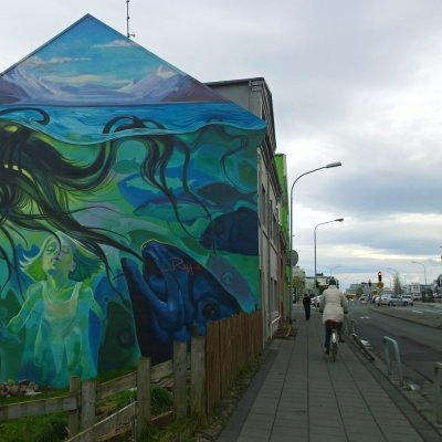 Laugavegur Reykjavik Iceland