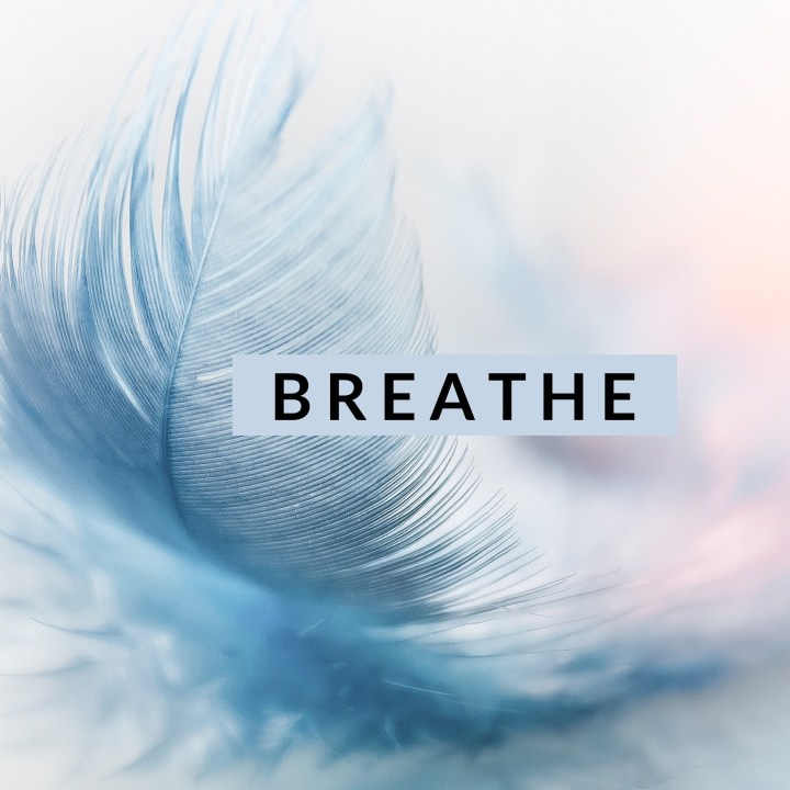 Inhale. Exhale.
