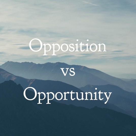 What's your mindset, opposition or opportunity?