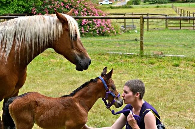 equestrian breast cancer survivor