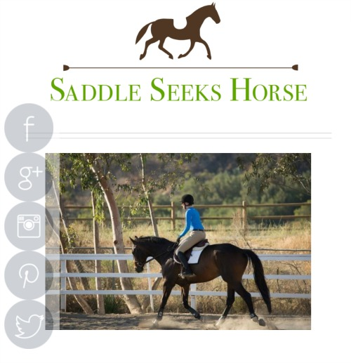 Why You Should Start a Horse Blog--17 Reasons Different Equestrian Supplies You Should Have With on