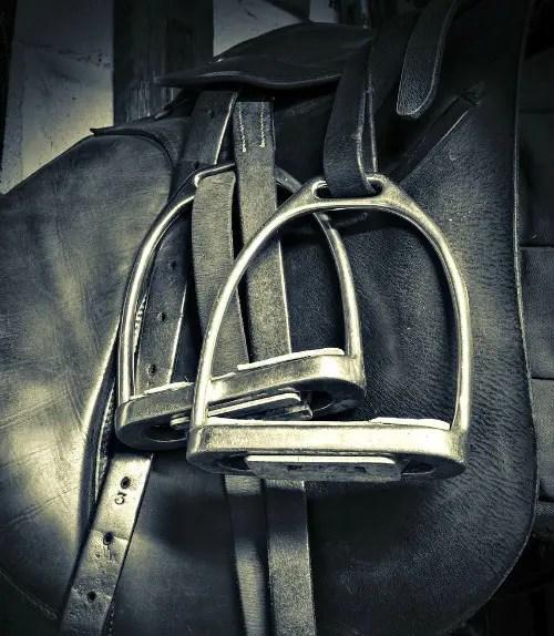 equestrian safety saddleseekshorse.com