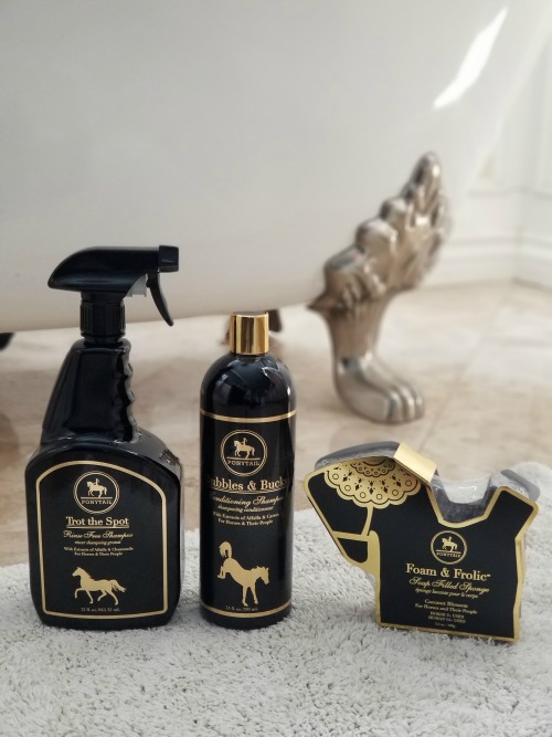 Ponytail Products: Hair Care for You and Your Horse