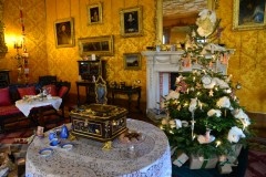 SGP_8266 Susan Guy_Charlecote Christmas w