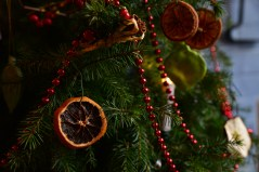 SGP_8335 Susan Guy_Charlecote Christmas w