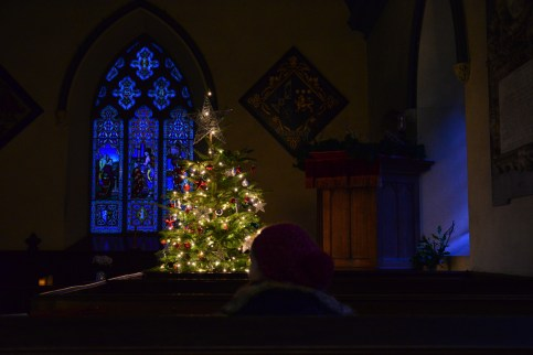 SGP_8639 Susan Guy_Calke Christmas w