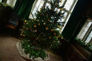 SGP_9146 Susan Guy_Baddesley Christmas w